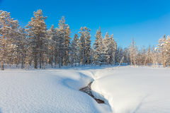 Beautiful Northern winter landscape Stock Photos