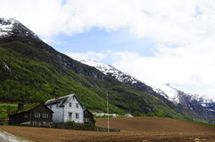 Beautiful Farm - Nordic Landscape, Norway - Postcard Royalty Free Stock Photography