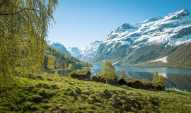 Beautiful norwegian landscape with old farm Stock Images