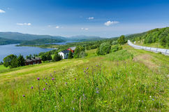 Beautiful Norwegian summer scenery Royalty Free Stock Photos