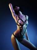 Beautiful nude body of sensuality elegant lady. Stock Photo