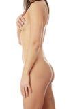Beautiful nude female body Stock Photo