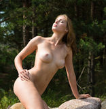 Beautiful nude woman Stock Images
