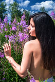 Beautiful nude woman relaxing on meadow. Back view Royalty Free Stock Images