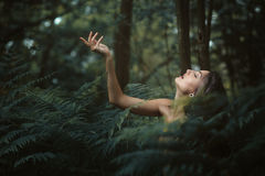 Beautiful nymph resting in a peaceful forest Royalty Free Stock Photography