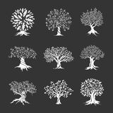 Beautiful oak trees silhouette set Royalty Free Stock Photos