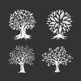 Beautiful oak trees silhouette set Stock Photo