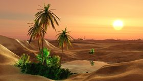 Beautiful oasis in the desert sand Royalty Free Stock Photos