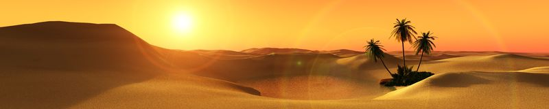 Beautiful oasis in the desert sand Stock Photos