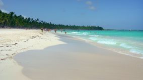 Beautiful ocean beach in Dominican Republic. At sunny morning stock footage