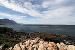 Ocean and coast landscape in Hermanus, South Africa Stock Images