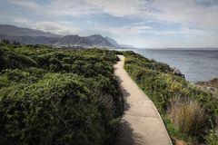 Ocean and coast landscape in Hermanus, South Africa Royalty Free Stock Photo