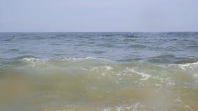 Beautiful ocean wave breaking at sunset in slow motion. Summer ocean waves stock video