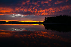 Beautiful Oceanside Sunset Mirror image. Beautiful treeline silhouette during a sunset in Tofino, British Columbia reflecting off the calm cove split in half by Royalty Free Stock Images