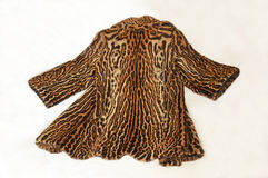Beautiful ocelot fur coat. Beautiful fur coat of ocelot on clear background Royalty Free Stock Photos