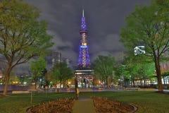 Beautiful Odori Park with TV Tower at night Royalty Free Stock Photos