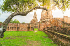 Beautiful old architecture historic of Ayutthaya in Thailand Royalty Free Stock Image