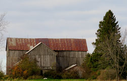 Beautiful old barn with rusty roof Royalty Free Stock Photography