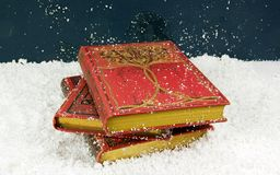 Beautiful old books (19 century) in the snow. Some  beautiful old books (19 century) for Christmas Stock Photo