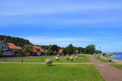 Beautiful Quay in village of Juodkrante, Lithuania. stock images