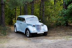 Beautiful old car in the forest. wedding car royalty free stock image