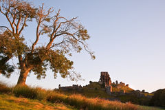 Beautiful old castle ruin on Autumn morning Royalty Free Stock Photography