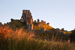 Beautiful old castle ruin on Autumn morning Stock Photo