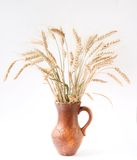 Beautiful old clay jug with  patterns Royalty Free Stock Photography