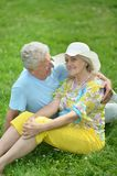 Beautiful old couple in field Stock Image