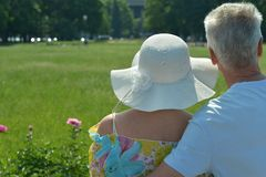 Beautiful old couple in field Royalty Free Stock Photos