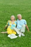 Beautiful old couple in field Stock Photography