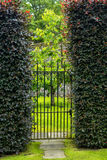 Beautiful old garden gate with hedges Stock Image