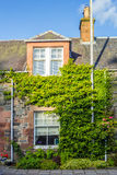 Beautiful old house covered with green ivy Royalty Free Stock Images