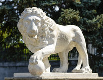 Beautiful old marble statue of lion near Vorontsov Palace in cultural heart of Odessa Royalty Free Stock Photos