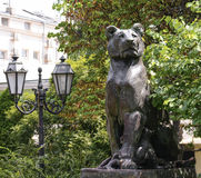 Beautiful old statue of lion in cultural heart of Odessa Royalty Free Stock Image