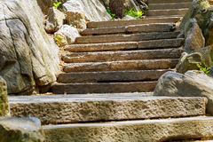 Beautiful old stone stairs stone steps in summer park Royalty Free Stock Image