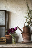 Beautiful old vintage English countryside garden potting shed in. Beautiful vintage English countryside garden potting shed interior detail royalty free stock image