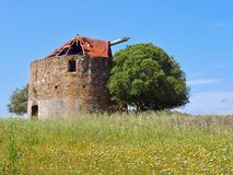 Beautiful old windmill on a meadow with a tree in Portugal stock photos