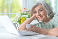 Beautiful old woman with a laptop Stock Photos