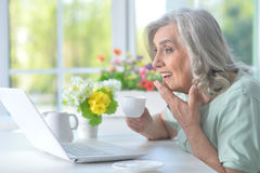 Beautiful old woman with a laptop Royalty Free Stock Image