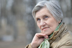 Beautiful old woman Stock Photography