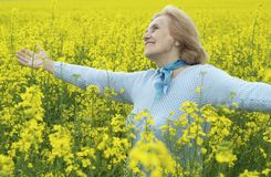 Beautiful old woman in yellow field Royalty Free Stock Images