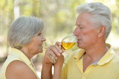 Beautiful older couple Stock Image