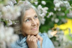 Beautiful older woman Royalty Free Stock Images