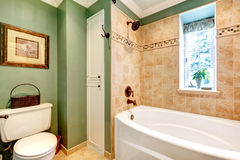 Beautiful olive and mocha tones bathroom Stock Image
