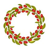 A Beautiful Olive Wreath or Olive Crown with Red Fruit Royalty Free Stock Photos
