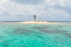 Beautiful One Palme Tree Island, at San Blas, Panama. Central America. Stock Images