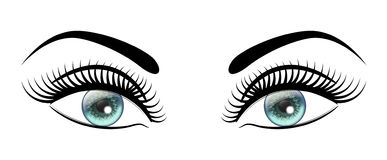 Beautiful open blue eyes with long black lashes The distinctive feminine look. Beautiful open blue eyes with long black lashes Stock Image