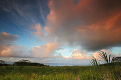 Beautiful orange clouds above grassland fields on the big island Royalty Free Stock Images