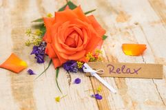 Beautiful orange colored rose with gift card, voucher or coupon for Relax. Bunch of flowers with gift card, voucher or coupon for Relax stock photography